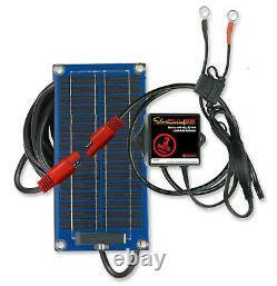 SolarPulse 3-Watt Solar Battery Charger & Maintainer